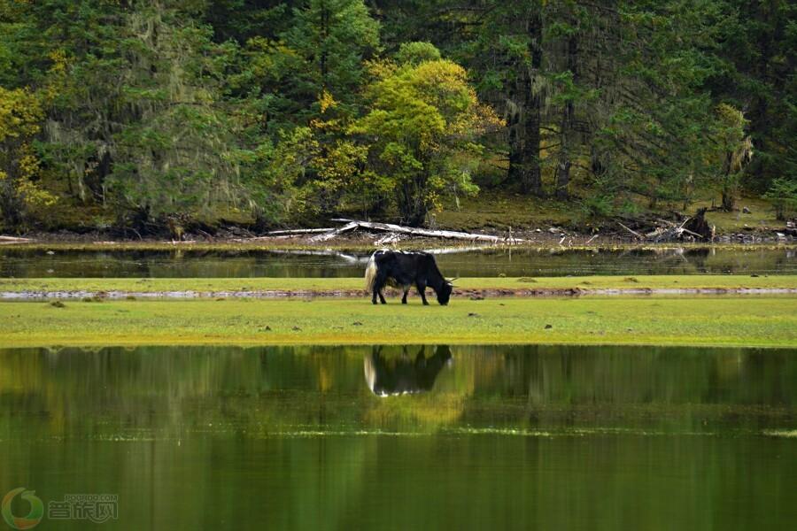 白城月亮湖水库风景区_月亮湖水库风景区地址和电话